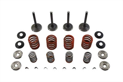 V-Twin 11-0795 - Nitrate Valve and Spring Kit